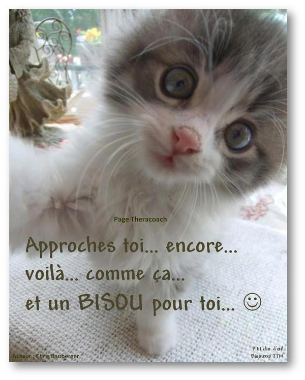 Bisous 583
