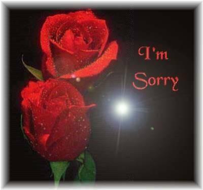 excuses , désolé , pardon