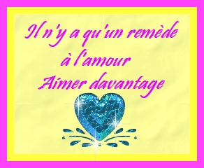 citations amour